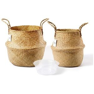 Seagrass Plant Basket Set of 2 - Hand Woven